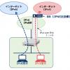 v6プラス「固定IPサービス」 設定ガイド : UNIVERGE IXシリーズ   NEC
